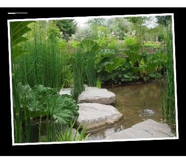 Arfi paysagiste valenton et brunoy cr ation de jardins for Paysagiste essonne